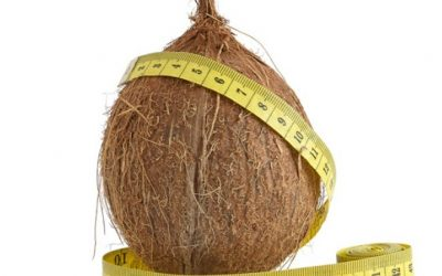 Life * Curious About Coconuts